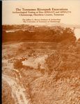 The Tennessee Riverpark excavations: Archaeological testing at sites 40HA102 and 40HA233, Chattanooga, Hamilton County, Tennessee