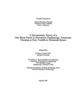 A documentary survey of a one block parcel in downtown Chattanooga, Tennessee : Chestnut to Fort, Twelfth to Thirteenth Streets